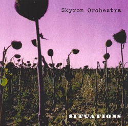 Skyron Orchestra - Situations, CD