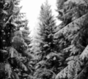 Ancient Obscurity – Luonnon Loputon Laulu, DigiMCD