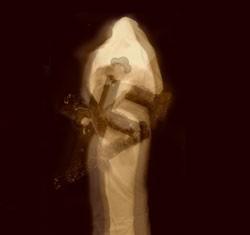 Mortuus - De Contemplanda Morte De Reverencie Laboribus Ac Adorationis, LP