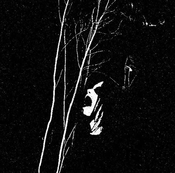 """Sanguine Myst - Upon Sylvan Thrones [black - 300], 7"""""""