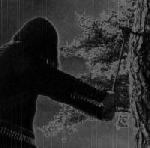 Zorn - Menschenfeind II : Antichristliches Naturerbe, CD
