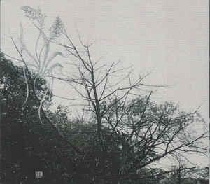 Sadness - Rain, DigiCD