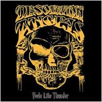 Desolation Angels - Feels Like Thunder, 4CD-BOX