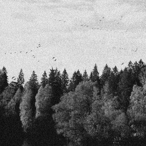 October Falls - A Collapse Of Faith, DigiCD