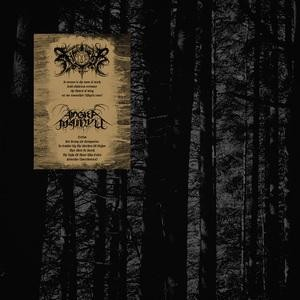 Xasthur/Angra Mainyu - Split, LP